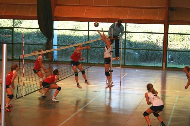 Volley Coupe de France 2014   5